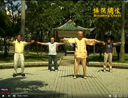 18 Chi Quong Shibashi